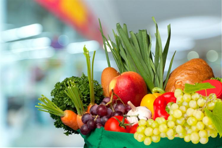 Katedra Technologii Żywności Pochodzenia Roślinnego